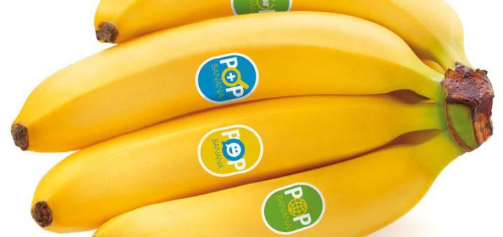 iranpack sanat bastebandi 172 UPM-Raflatac_Food-compliant-labels