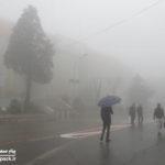 باران و مه در نمایشگاه