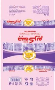 Andisheh-Amol-s-11