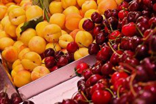iranpack-sanat-bastebandi-Apricot