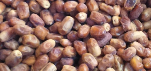 Iranian-Cuisine_Persian_Zahedi-Datesjpg