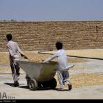 iranpack-sanat-bastebandi-n2986747-4656177
