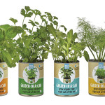 iranpack-sanat-bastebandi-Back-To-The-Roots-Garden-in-a-Can