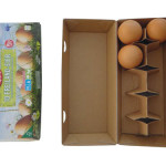 iranpack-sanat-bastebandi-Entry_177_Werner-Lampert-GmbH_20609_Eggbox_1