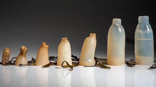 iranpack-sanat-bastebandi-algae-bottle2